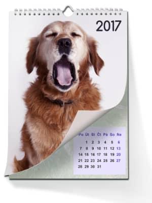 Fotokalendář, Foto kalendář, kalendáře foto