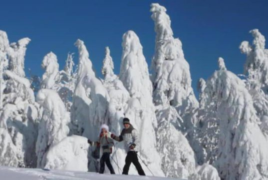 Turistika, sněhoběžky